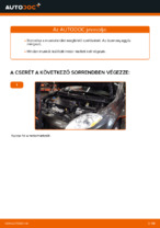 Online ingyenes kézikönyv - Üzemanyagszűrő FIAT BRAVO II (198) csere