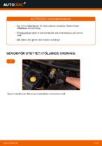 PDF Manual för reparation av reservdelar bil: FIAT DUCATO Flak/chassi (244)