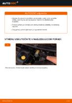 PDF Manuál pre opravu náhradné diely: BRAVO II (198)