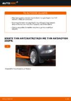 Αλλαγη Σετ ρουλεμάν τροχού: pdf οδηγίες για FIAT BRAVA
