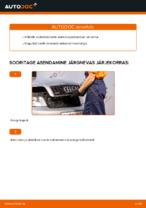 Kuidas asendada AUDI A4 B6 süüteküünlaid