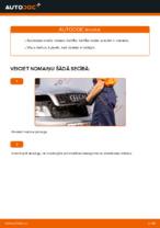 Automehāniķu ieteikumi AUDI Audi A4 b6 2.0 Amortizatoru Atbalsta Gultņi nomaiņai