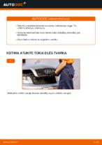 Instrukcijos PDF apie A4 priežiūrą