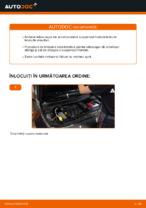 Recomandările mecanicului auto cu privire la înlocuirea RENAULT RENAULT MEGANE II Saloon (LM0/1_) 1.9 dCi Filtru combustibil