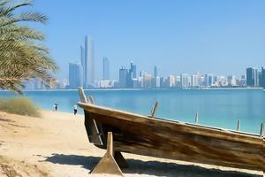 Charter Emiratele Arabe Unite
