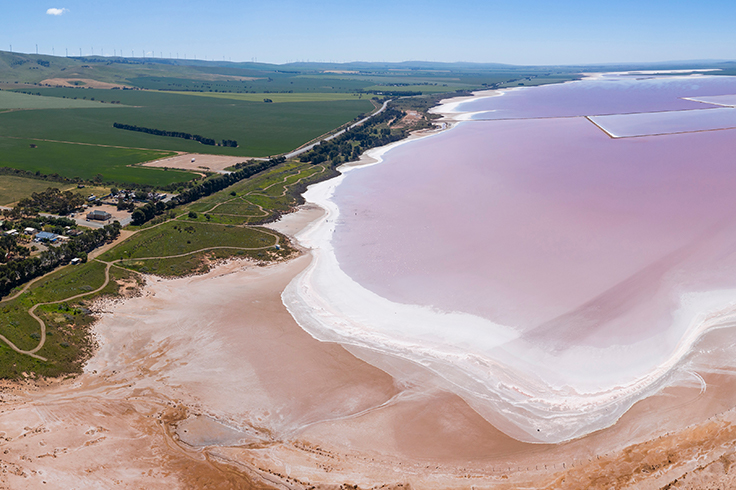 lake bumbunga salt pink lake