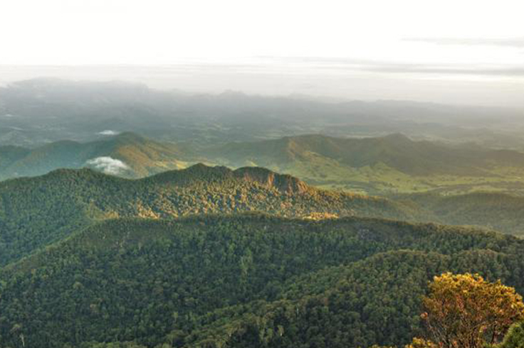 Scenic view at Wollumbin National Park