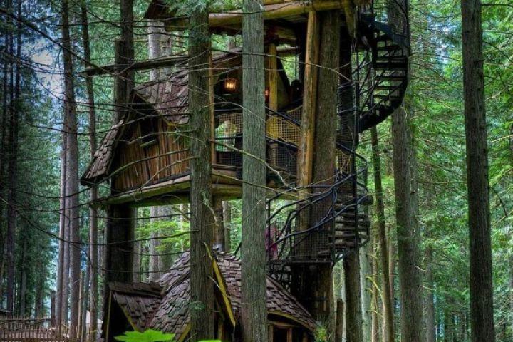 Ma cabane dans l'arbre : quand l'adulte réalise le rêve de l'enfant!