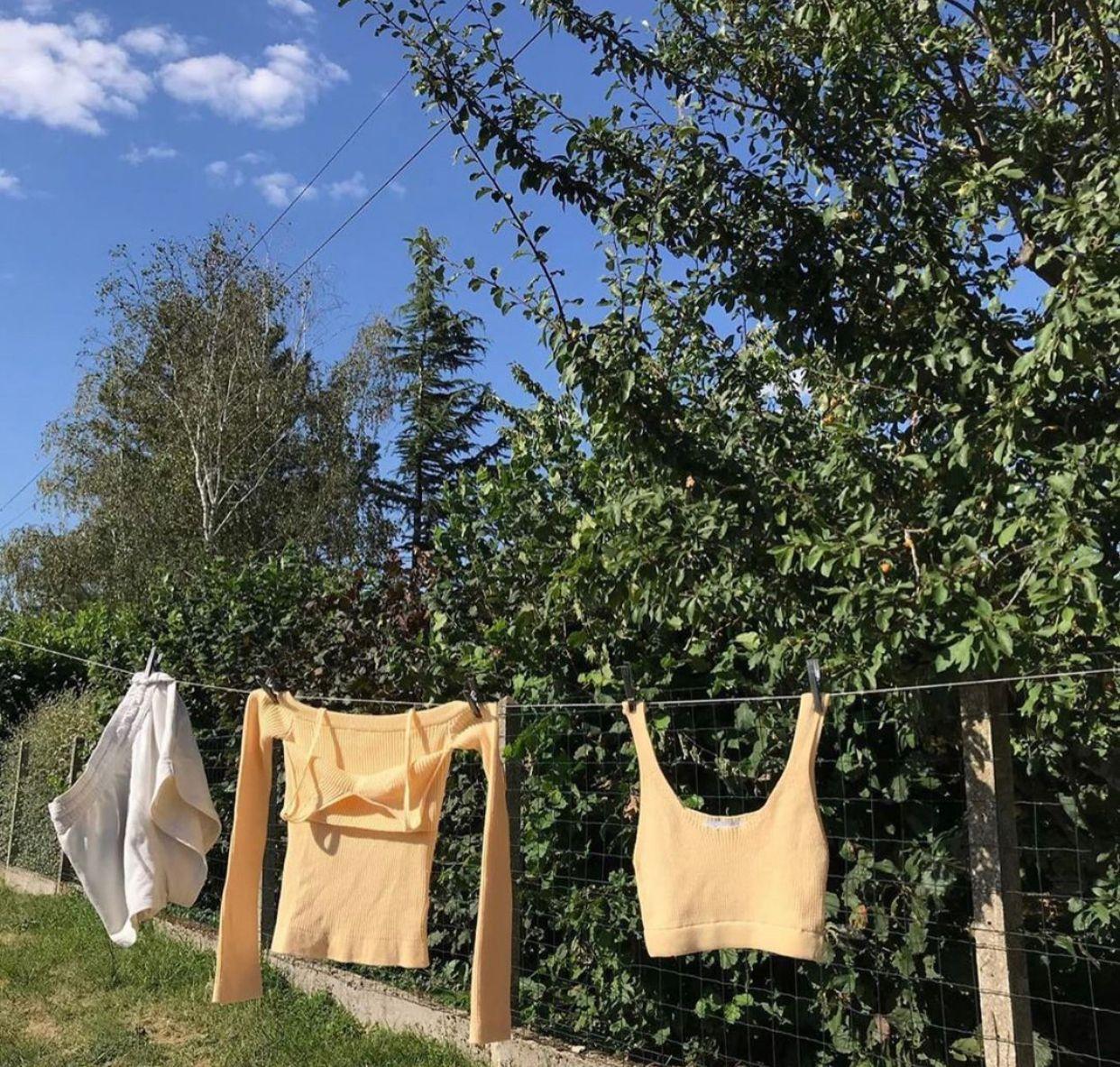 Gelbe Kleidung auf Wäscheleine Natur.jpg