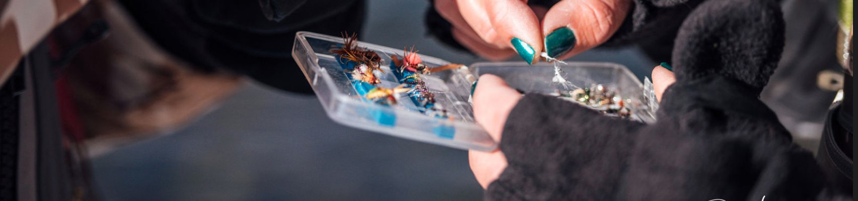 Selecting flies during the winter