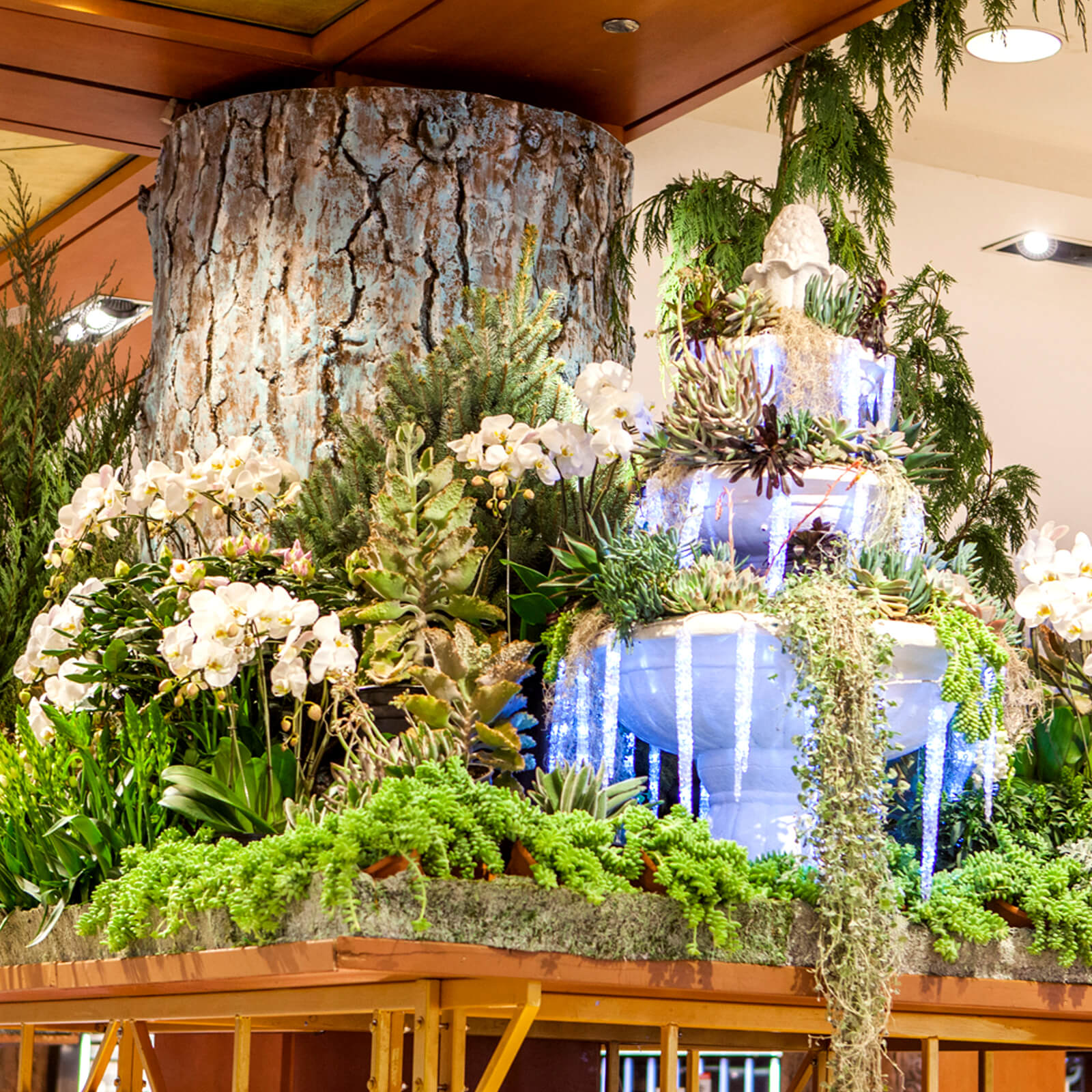 Macys Flower Show 2018 Chicago Macys