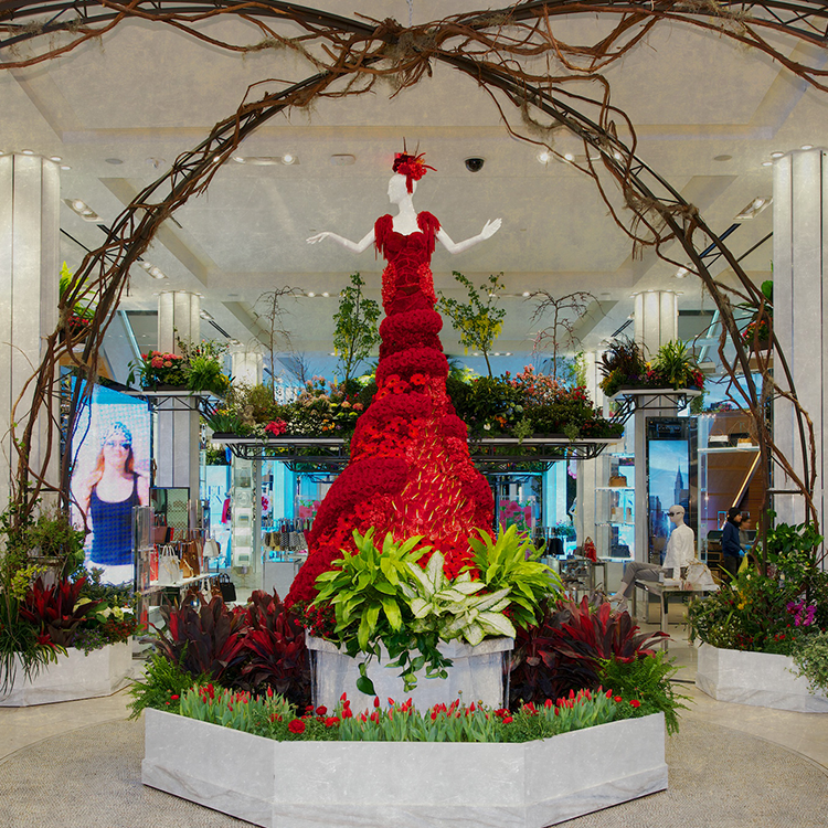 Flower Show - Journey To Paradisios - Macy's
