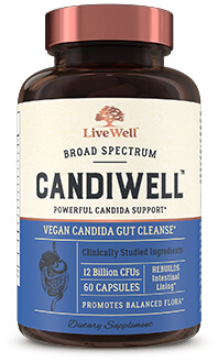 Your Guide To The Top Candida Supplements Of 2019   Smarter