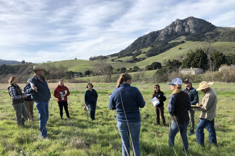 People gathered at Cal Poly Ranch to discuss carbon farming