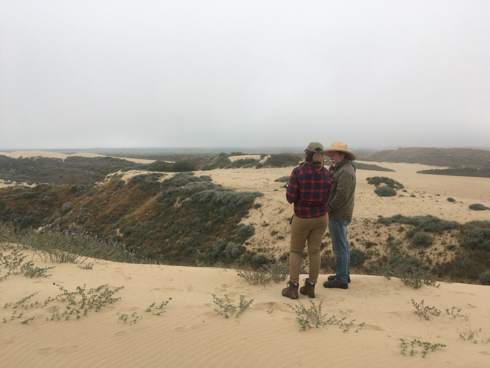 Dunes Protected Area