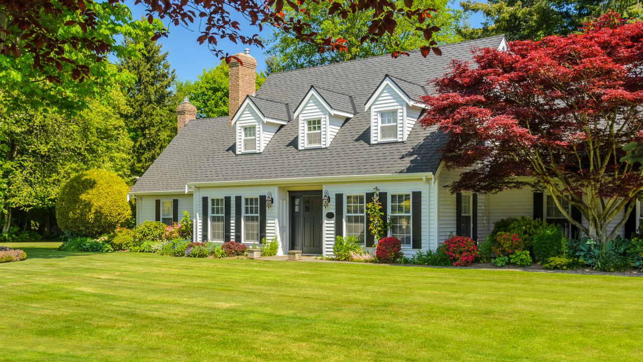 Budget Curb Appeal Tips Making An Impact At The Front Door