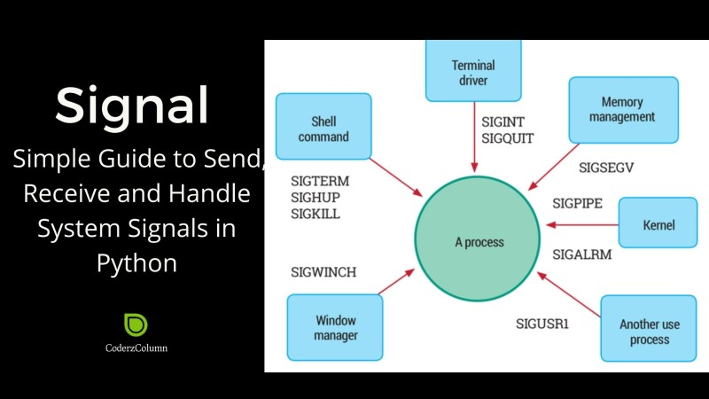 signal - Simple Guide to Send, Receive and Handle System Signals in Python