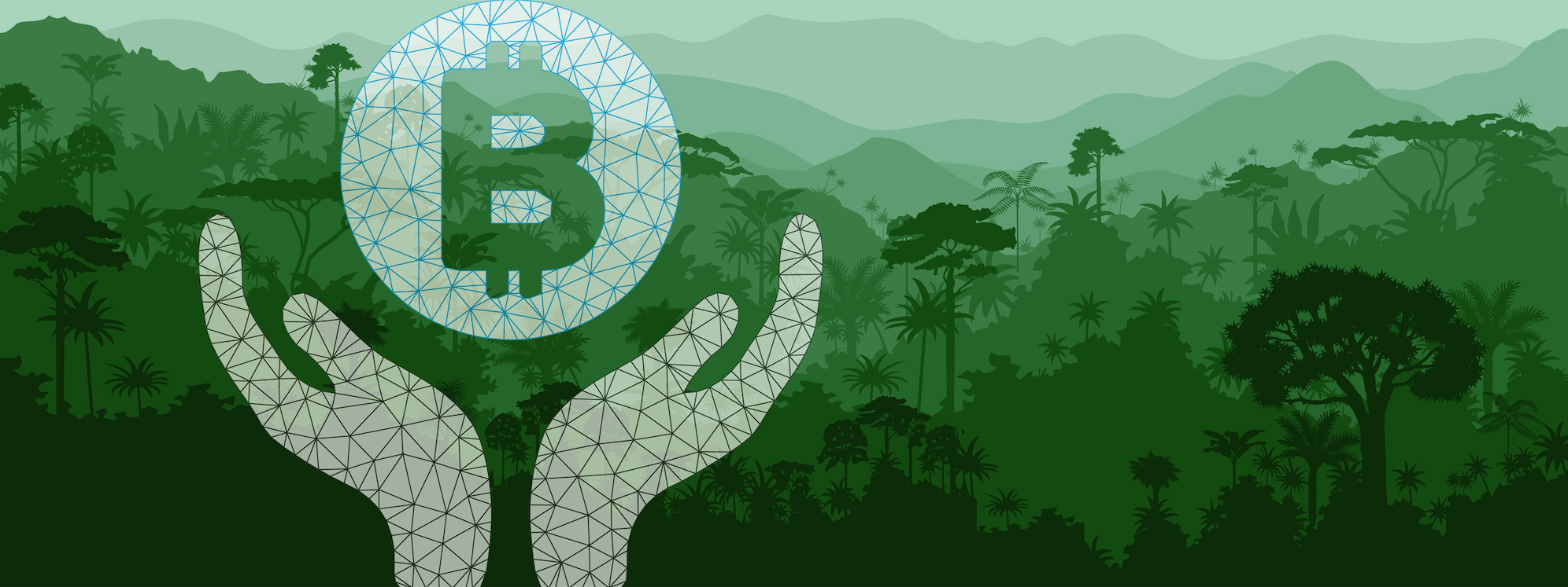 Donate to Protect the Rainforest with Bitcoin