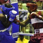 Boxeadores RD triunfan en clasificatoria para Panamericanos