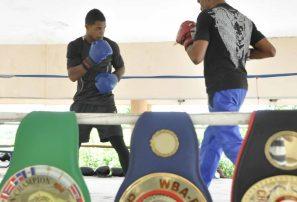 Boxeadores RD actuarán ante siete países en cartelera