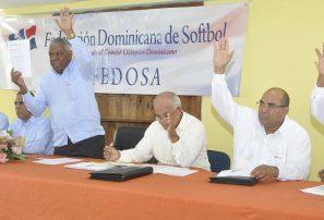 Federación Softbol aprueba cambios en sus estatutos