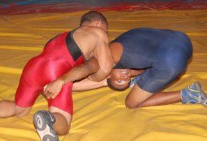 Luchadores obtienen tres medallas en Panam