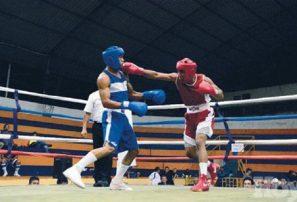 Dominicanos ganan oro en Continental de boxeo