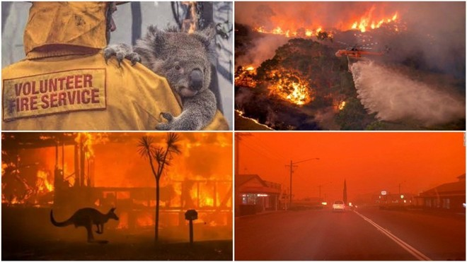 Jugadores de la ATP unen esfuerzo en ayuda incendios Australia