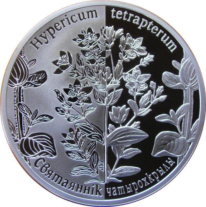 Coin 20 Roubles (Hypericum tetrapterum) Belarus reverse
