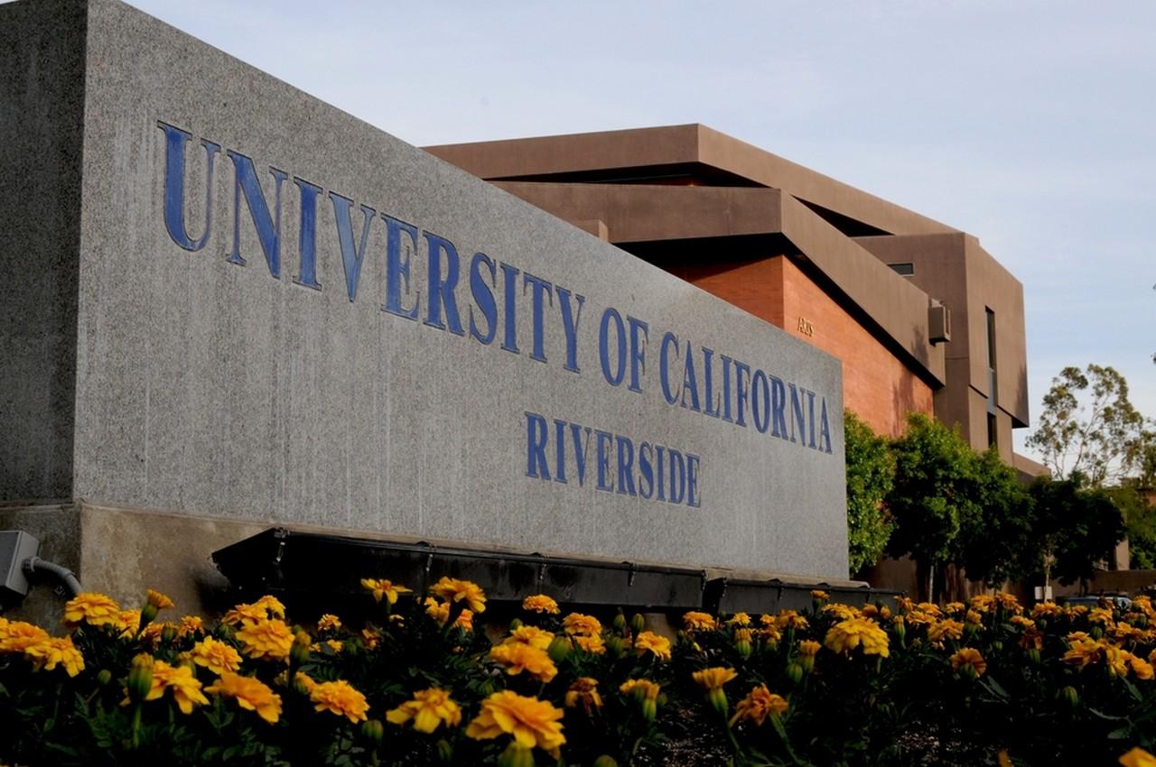 캘리포니아 대학교 (리버사이드)