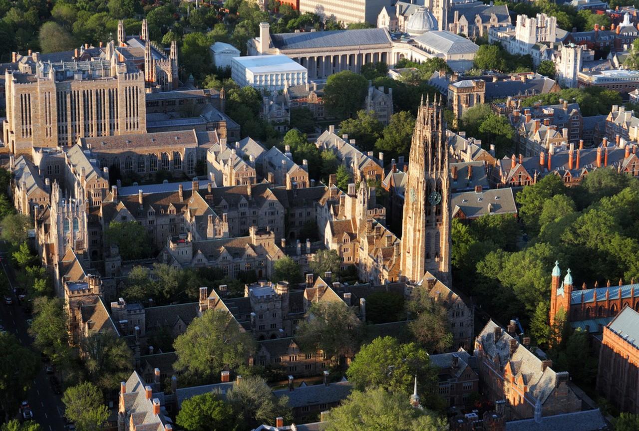 예일 대학교