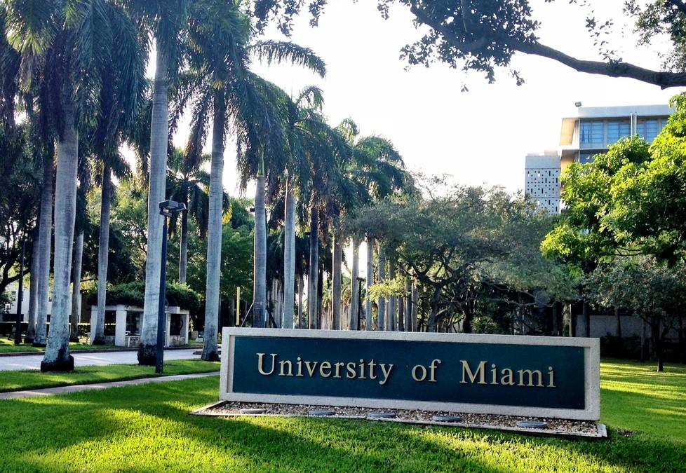 마이애미 대학교