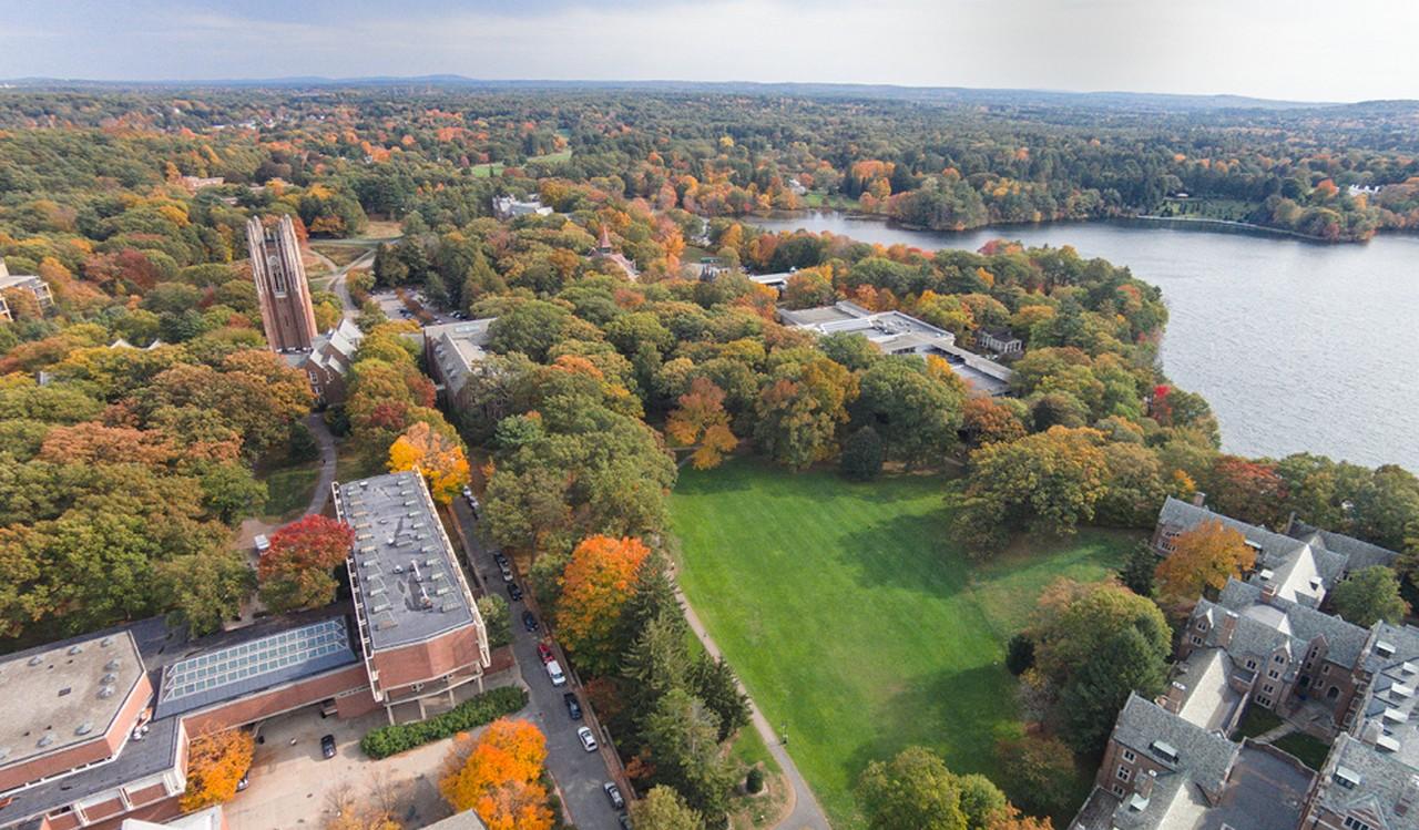 웰즐리 대학교