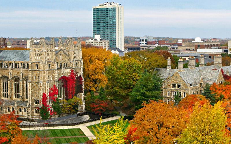 미시간 대학교