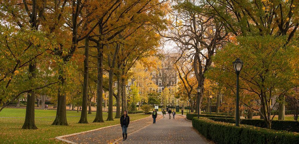 포드햄 대학교