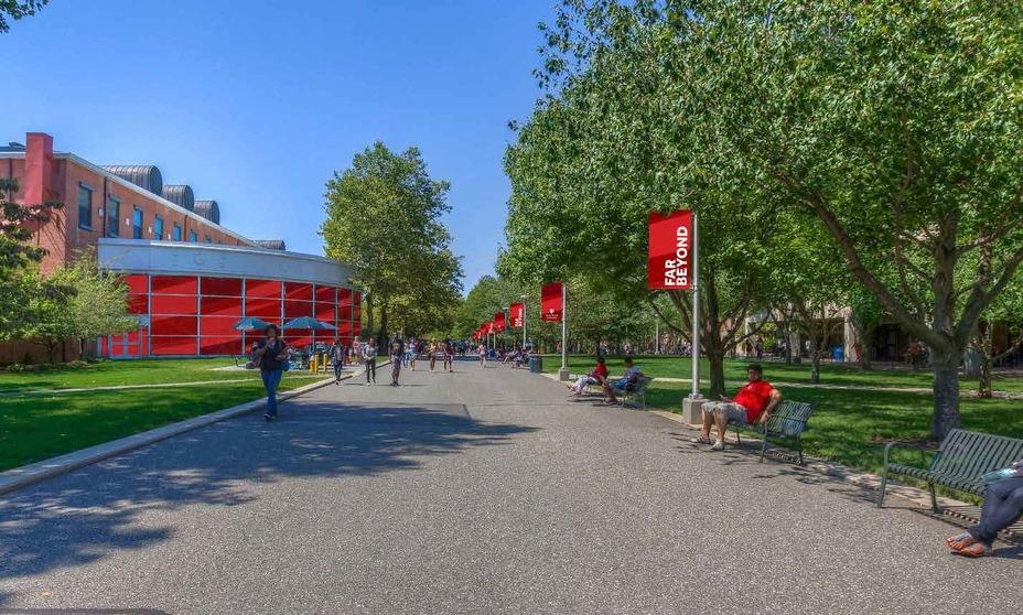 스토니 브룩 대학교