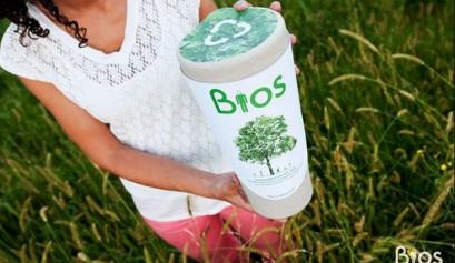 Afbeelding Bios Urne - De Urne die boom wordt