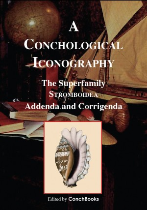 The Superfamily Stromboidea