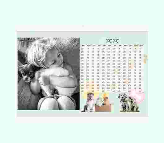 Cuccioli Annuale 30X20 - PhotoSì