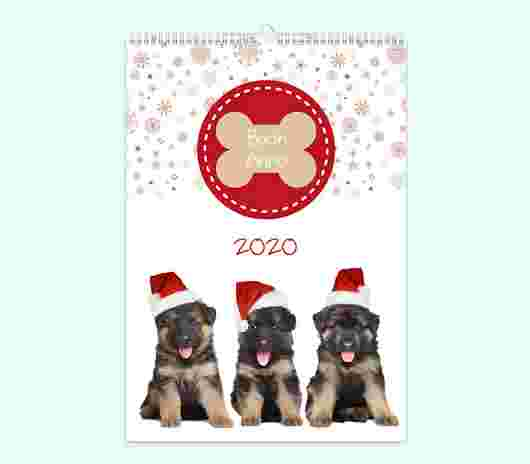 Cuccioli Mensile 30X40_01 - PhotoSì