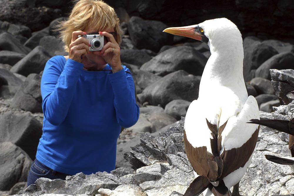 Crucero de lujo por la isla del norte - Islas Galápagos