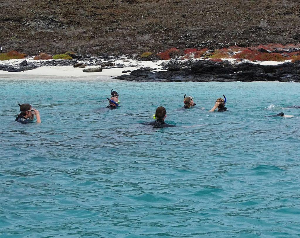 Sombrero Chino - Islas Galápagos