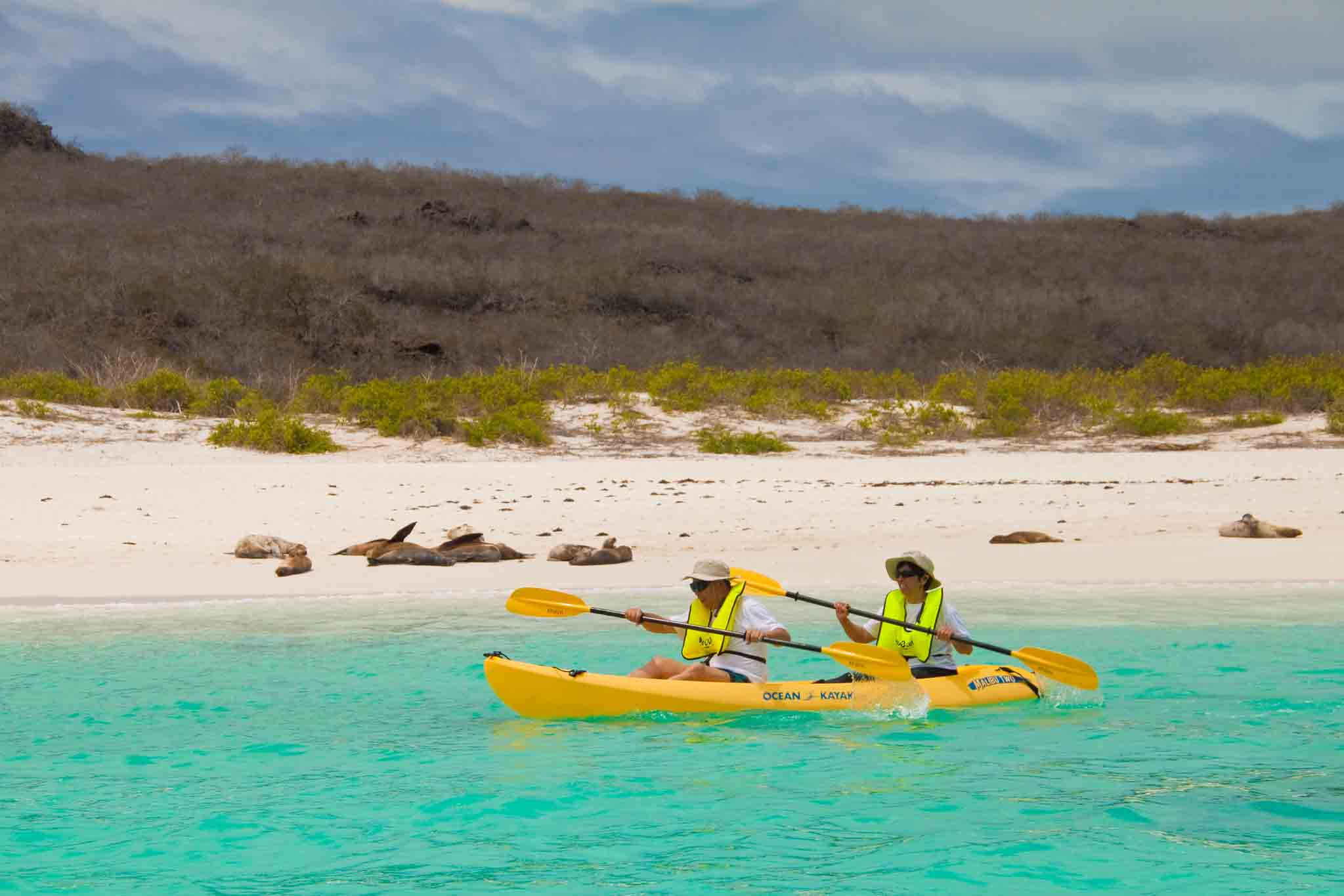 Family Travel to the Galapagos islands – FAQs