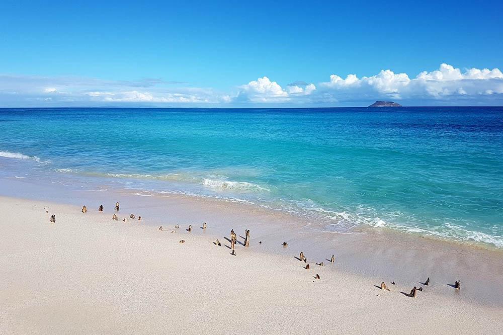 Sur 5 Dias - Islas Galápagos