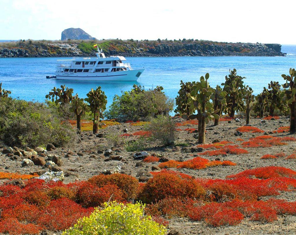 Plaza Sur - Islas Galápagos