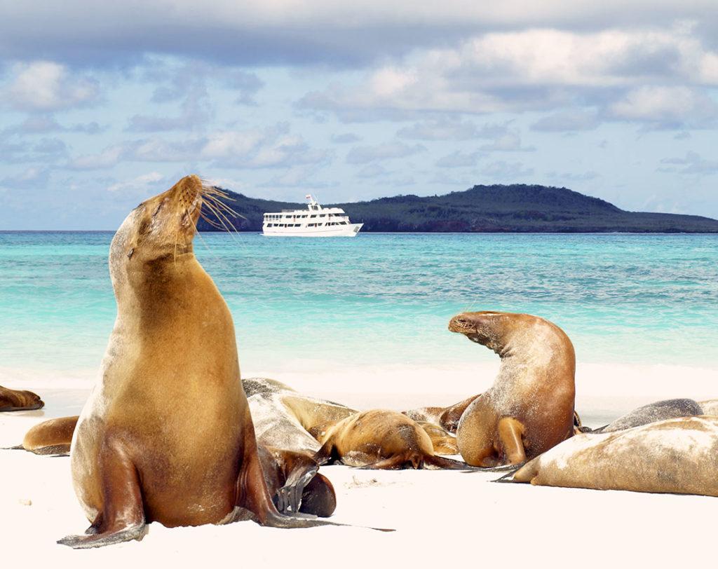 Española - Islas Galápagos