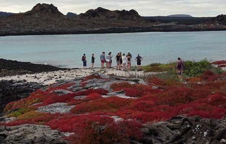 Itinerario A 8 Días - Islas Galápagos