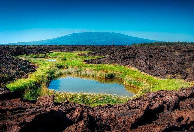 Itinerario Fernandina - Islas Galápagos