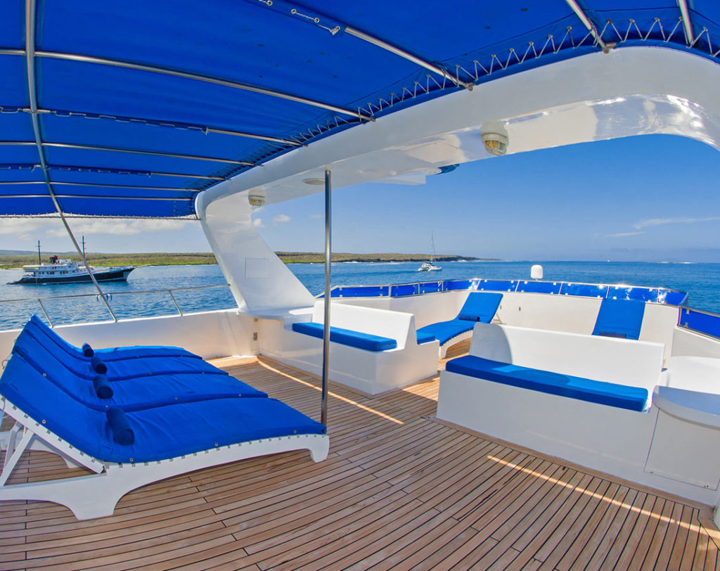 Sun deck tip top 4