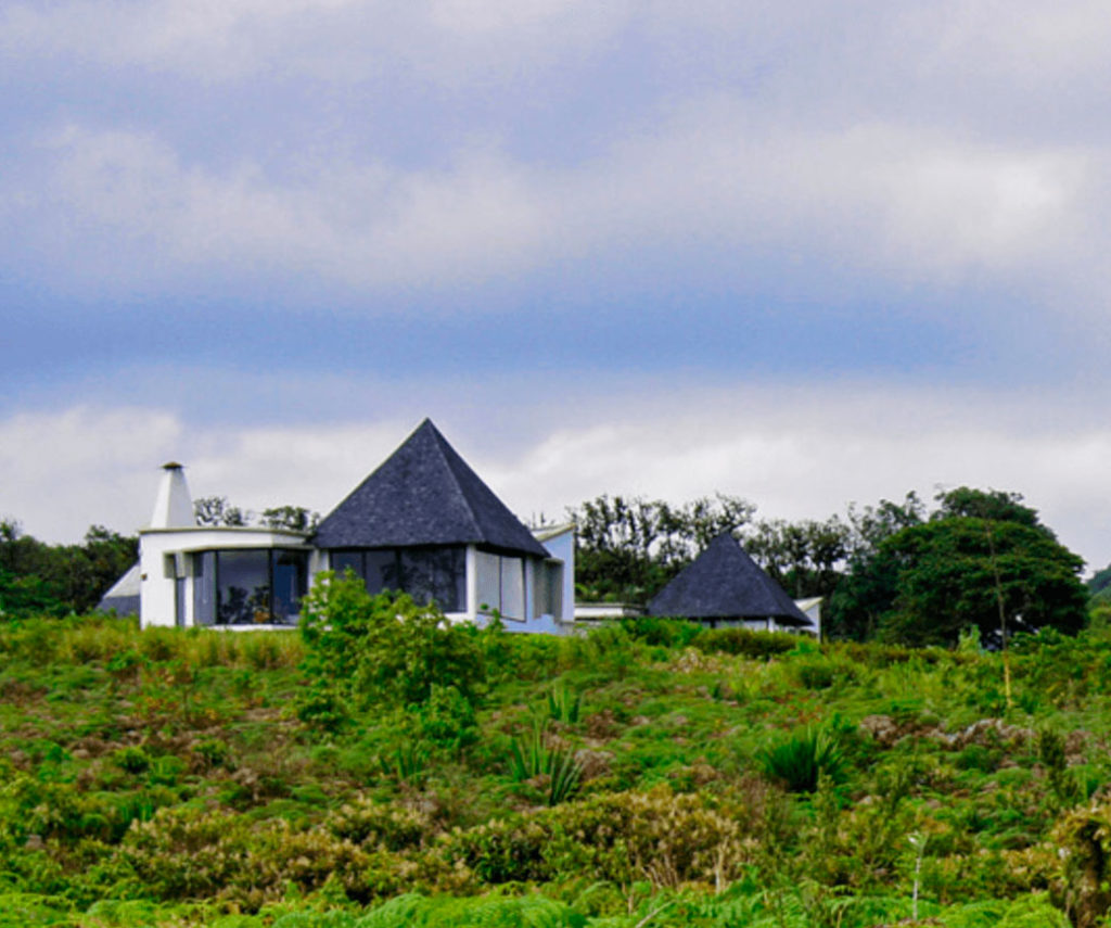 Royal Palm - Islas Galápagos